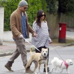 Channing Tatum & Jenna Walk Their Dogs